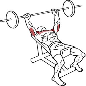 incline-bench-press