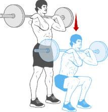barbell-fron-squat