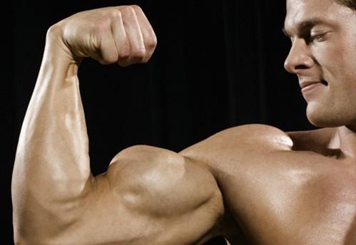 buyuk-biceps-kol-kasi