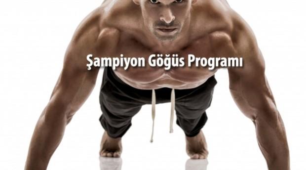 sampiyon-gogus-programi