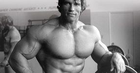 Arnold-tambem-usa-BCAA